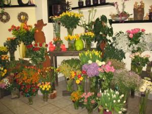 Foto: Blumen KontrastReich