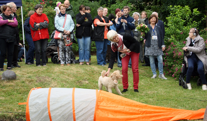 Hunde-Artistik im Bethel-Garten. Foto: Hartmut Neumann
