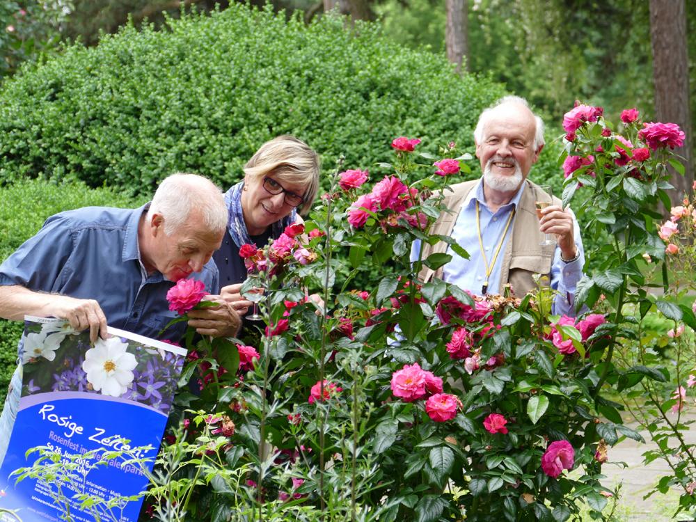 Rosige Zeiten im Westfalenpark: Ein Fest für die Königin der Blumen