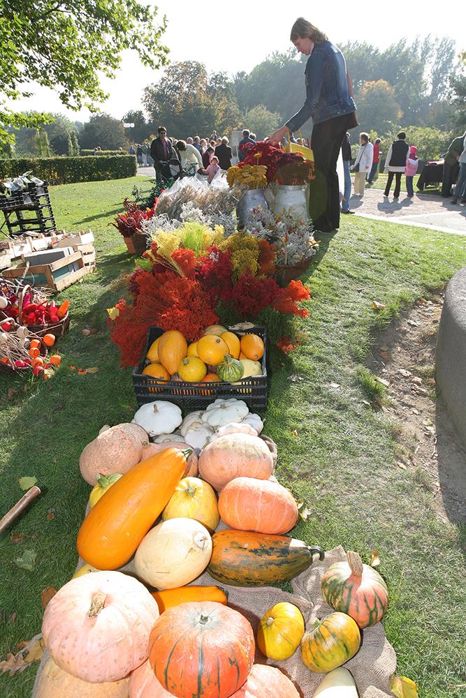"""Der Westfalenpark macht """"Gartenlust"""": Herbstmarkt am lockt am Wochenende"""