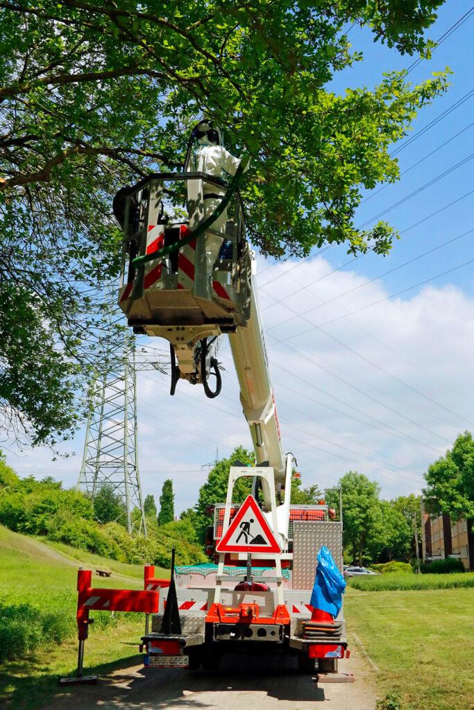 Absaugung mit Hubsteiger (Foto:  Gaye-Suse Kromer, Dortmund-Agentur)